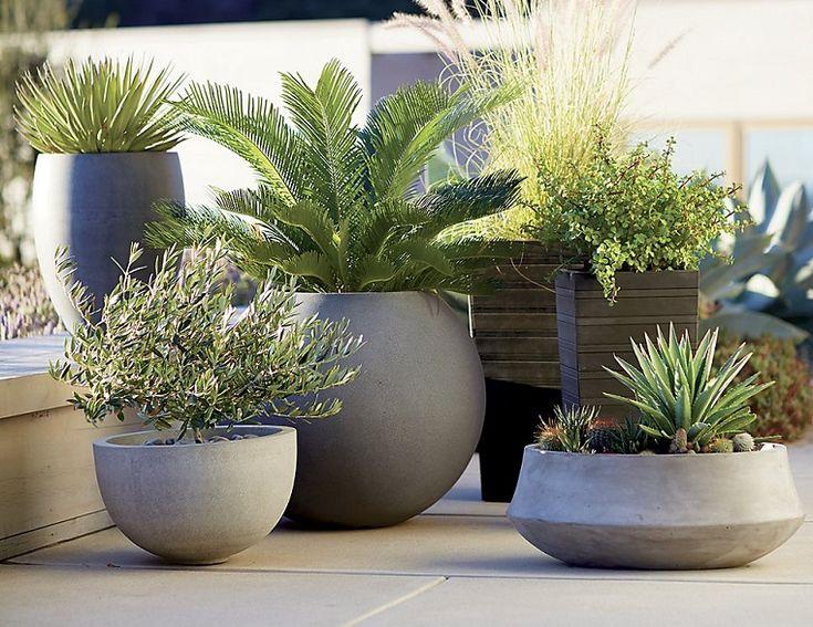 251 best giardini images on pinterest for Piccoli giardini ornamentali