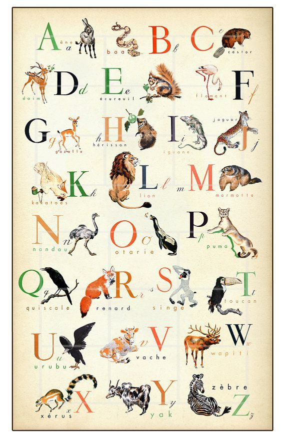 French Alphabet - Wonderful Animal Alphabet Print - 11 x 17 inch    $22   For Lily's room.