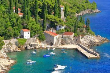 Dalmatia Day Tour from Dubrovnik with Salt Ponds - Dubrovnik | Viator