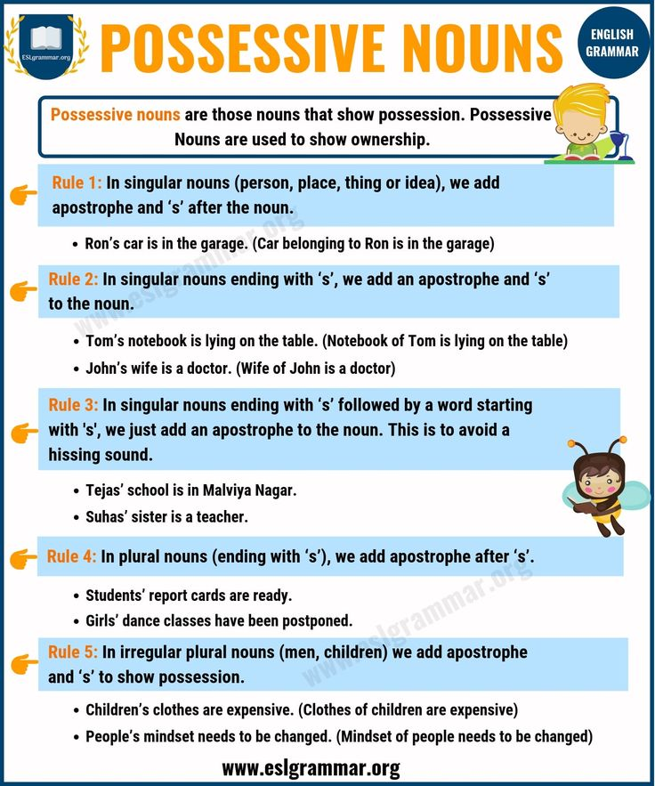 Possessive Nouns Definition, Rules and Useful Examples