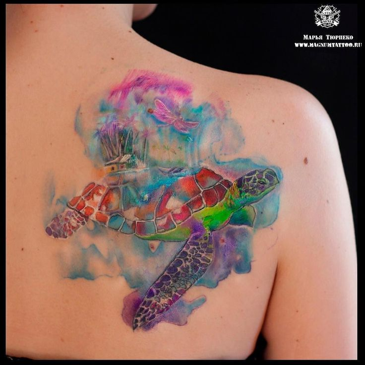 #MT_Наши_работы@magnummoscowtattoo #MT_Марья_Тюрпеко@magnummoscowtattoo  Уже зажившая татуировка черепахи в исполнении Марьи Тюрпеко!  #magnumtattoostudio #марьятюрпеко #магнумтату#tattoo #тату #watercolor #watercolortattoo #акварель #черепаха by stupenka_