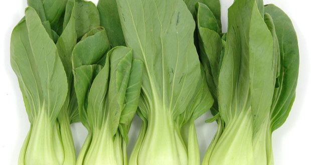 Health Benefits of Bok Choy or Chinese Cabbage