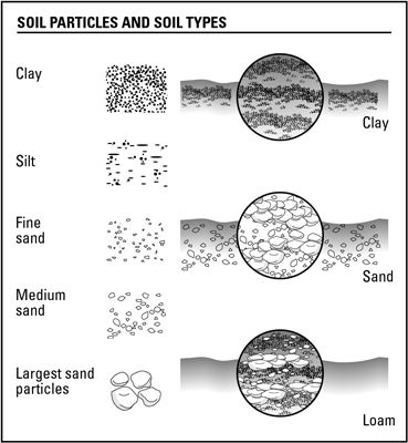 14 best images about soils on pinterest soil type for Soil composition definition