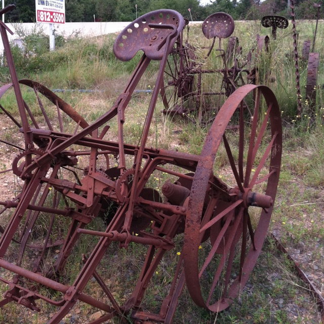 A fine specimen of the days before the ubiquity of gas powered farm equipment: a mule powered planter (a real bumpy ride).