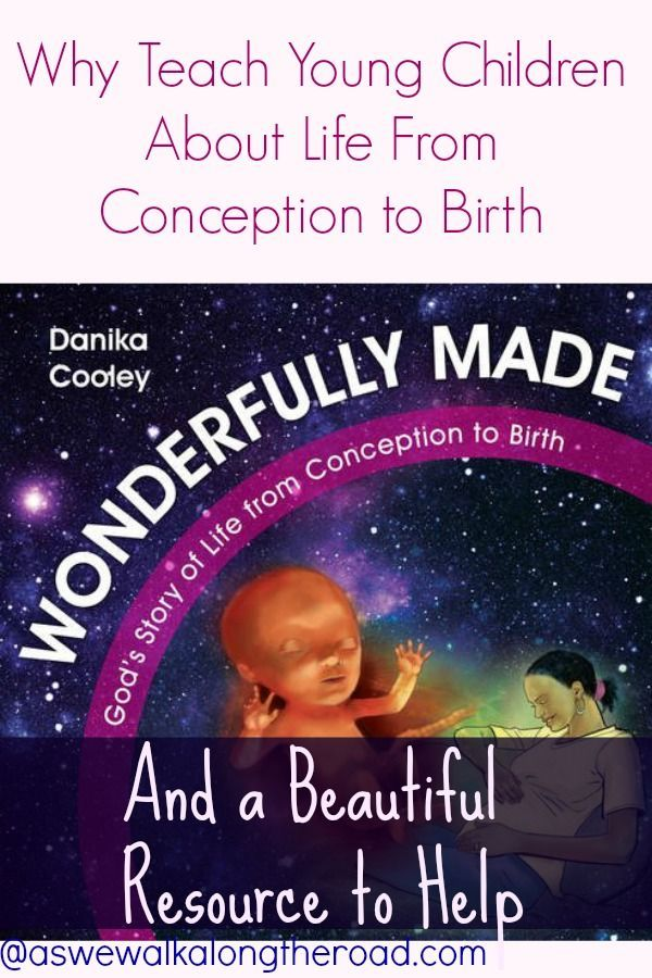 """This is a beautiful book for answering some of the basic questions about babies and their development. It doesn't deal with the question of how conception happens, and it doesn't get detailed about the birth process. But it covers the development of a baby from conception through birth in a way that provides correct, factual information with a distinctly Christian worldview. That makes it a perfect book to share with even young children when they begin to ask questions."" ~ Leah Courtney"