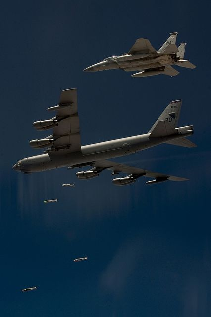 Birds and B's by Official U.S. Air Force