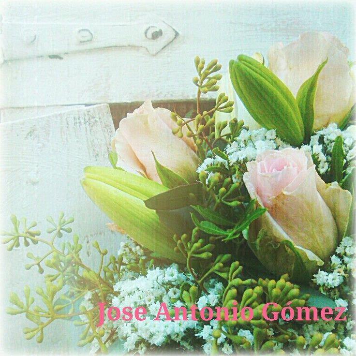 Los colores de una agradable mañana de verano... flores del verano!