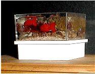 aquarium avec gelée pour bougies