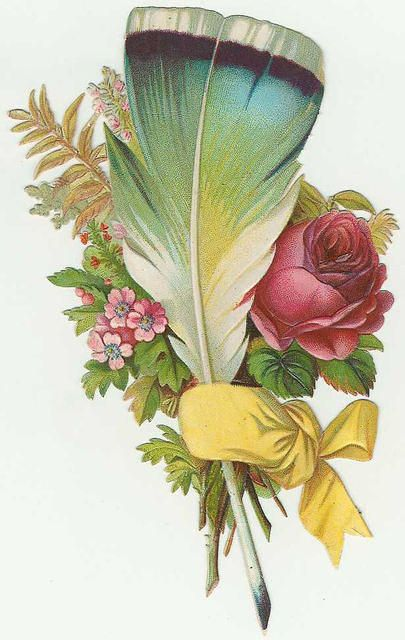 feather and flowers