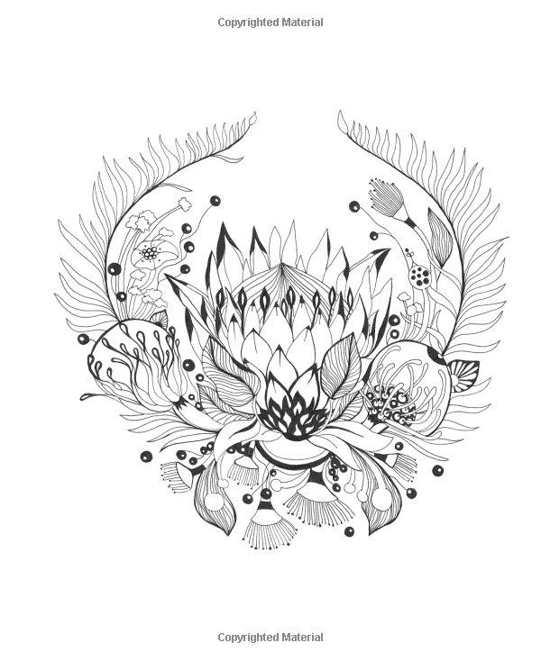 botanical wonderland a blissful coloring retreat - Botany Coloring Book