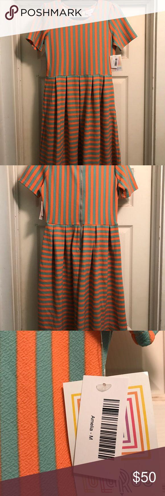 LuLaRoe Amelia Dress NWT Size M LuLaRoe Amelia Dress NWT Size M LuLaRoe Dresses Midi