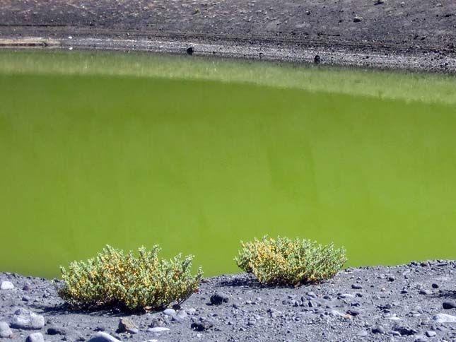 Tűzhegyek, Kanári-szigetek  zöld víz, a fekete homok