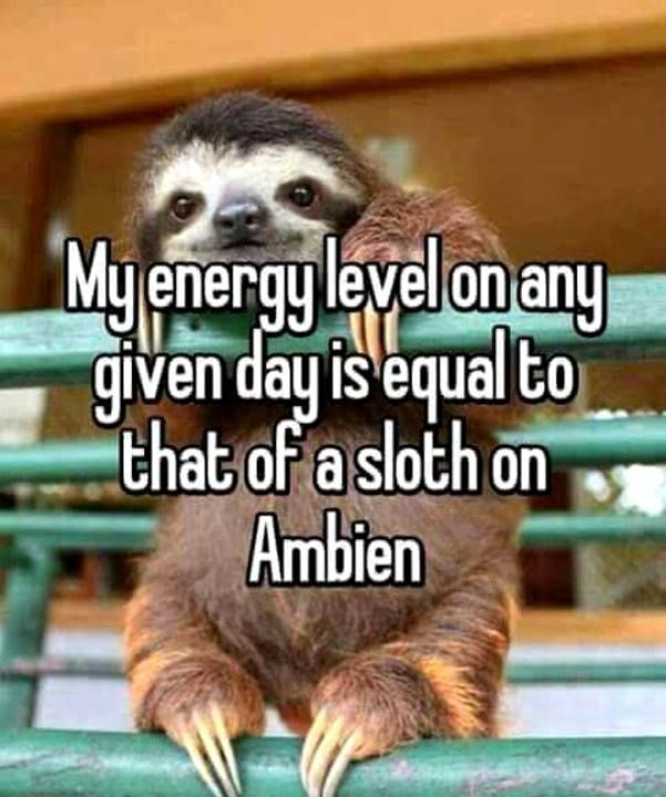 I can't even !!  On Ambien I defiantly resemble the characteristics of a sloth on ambien too!  Guilty!!!!&!