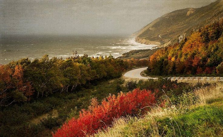 The Cabot Trail in Cape Breton Highlands National Park is one of the world's top scenic drives and it really shines in fall. You get more colours here than anywhere else in Canada. Look at that!  (Photo: Michel Soucy)