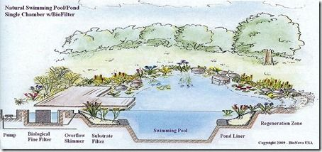1000 ideas about swimming pool pond on pinterest - Public swimming pools in poughkeepsie ny ...