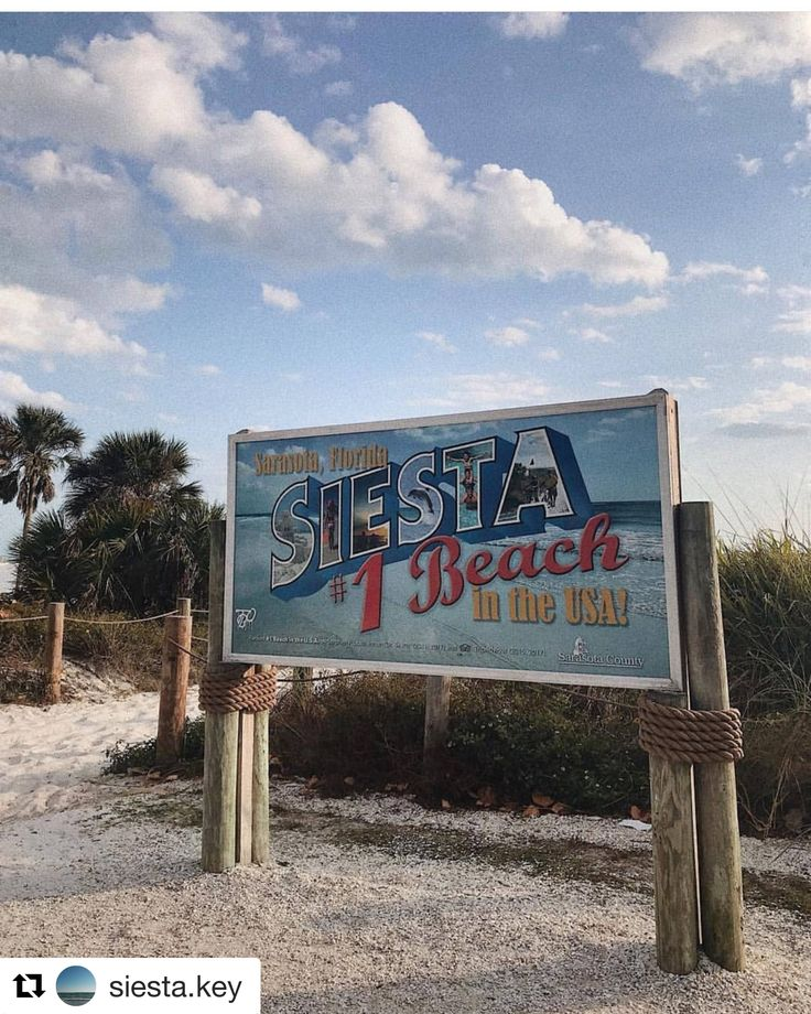 Pin by Allthingsflorida on Tampa Bay Siesta beach