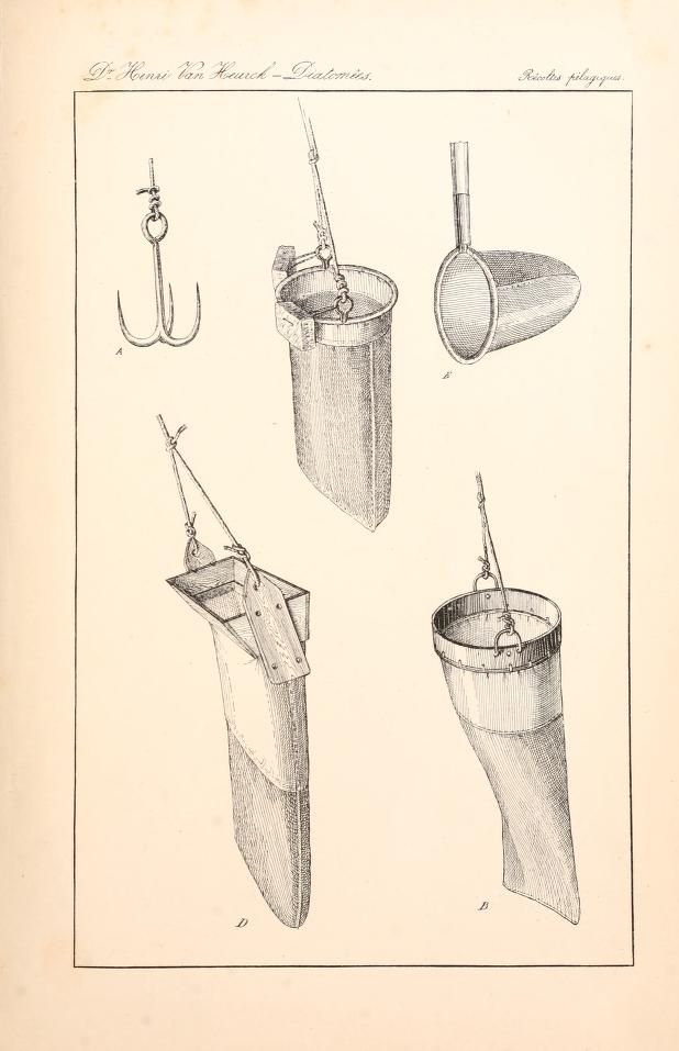 A treatise on the Diatomaceae, - Biodiversity Heritage Library