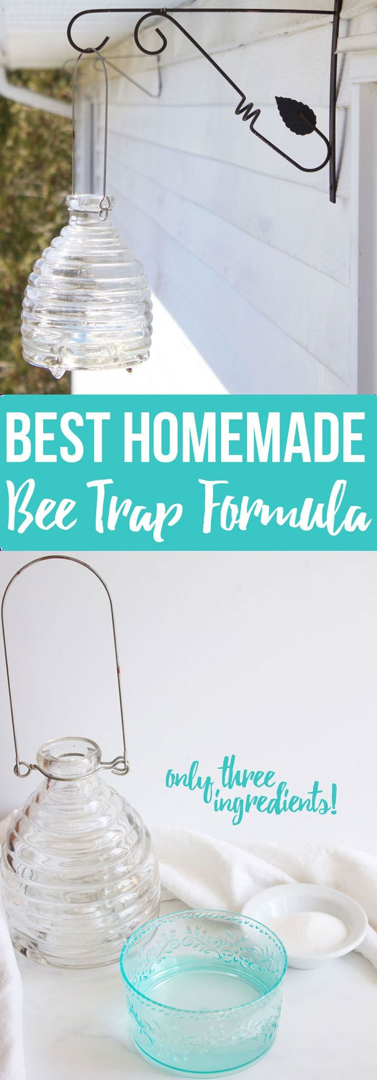 Best Homemade Bee Trap Formula! Only 3 ingredients!! - www.nikkisplate.com