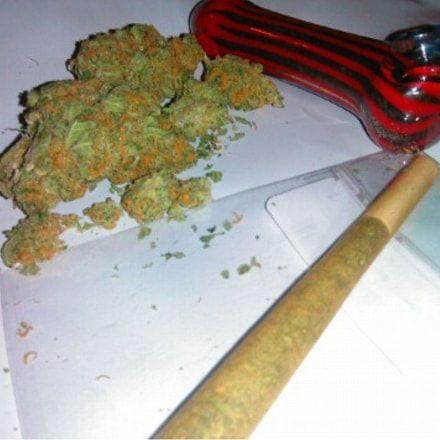 High Quality Cannabis Seeds - Worldwide Delivery - marijuana #cannabis #marijuana #weed #cbd #medical