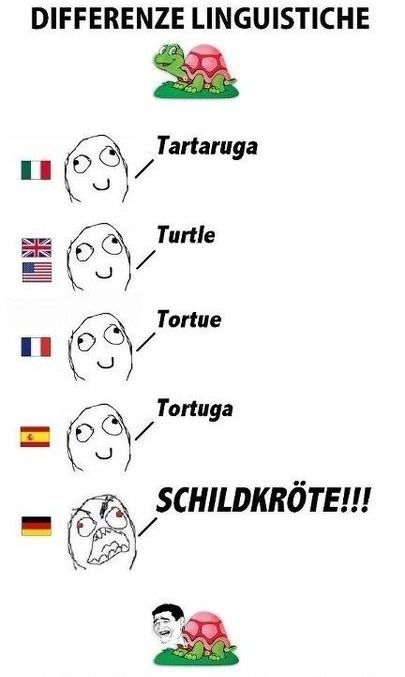GERMAN / LANGUAGES