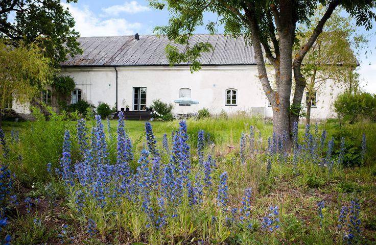 Sommarhus på Gotland – inspireras av uteplatserna - Sköna hem