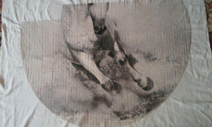 Koń haft krzyżykowy - BJGoleń