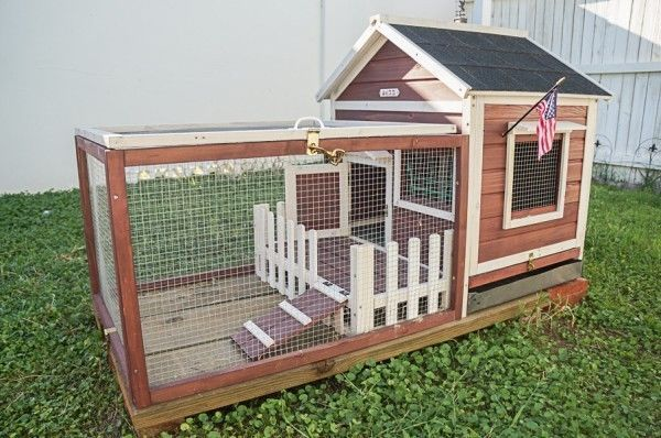 Rabbit guinea pig bunny small animal pet hutch house for Rabbit house images