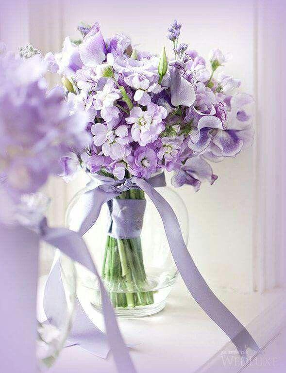 25+ beste ideeën over Lila bloemen op Pinterest - Seringen ...