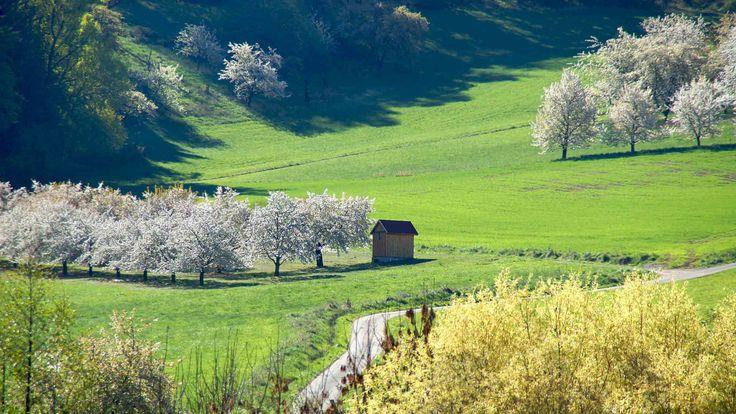 Ferienwohnung in Ermreuth, Fränkische Schweiz. Ruhig gelegen und modern.
