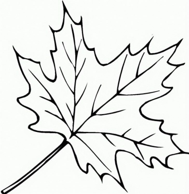 Fall Leaves Coloring Pages Free Fall Leaves Coloring Pages