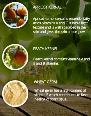 APRICOT KERNAL -  Apricot kernel contains essential fatty acids, vitamins A and C. It has a light texture and is well absorbed in the skin and gives the skin a nice glow. PEACH KERNEL - Peach kernel contains vitamins A and E and B vitamins. WHEAT GERM - Wheat germ has a high content of vitamin E which contributes to faster healing of scar tissue.