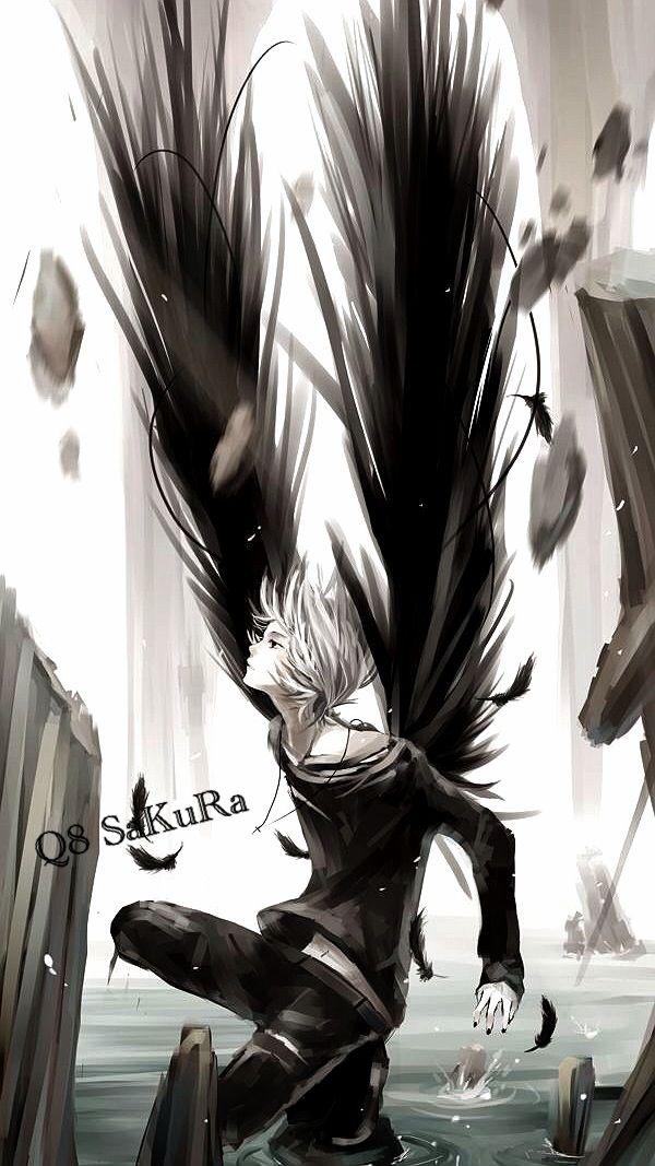 Q8 SaKuRa Anime