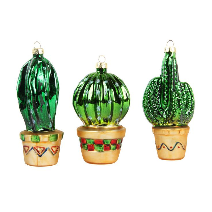 Cactus Decorated For Christmas: 1000+ Ideas About Christmas Cactus On Pinterest