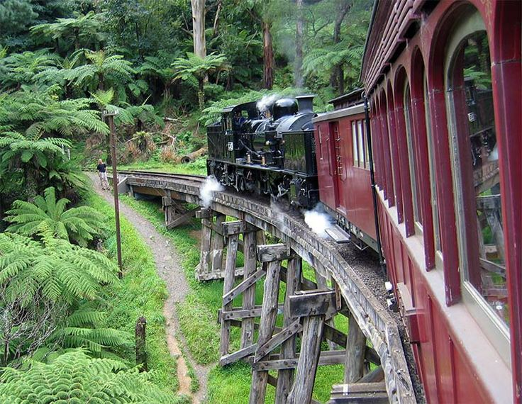 Puffing Billy - recreating rail travel's more glamorous days in Victoria, Australia. Image by Stephen Edmonds