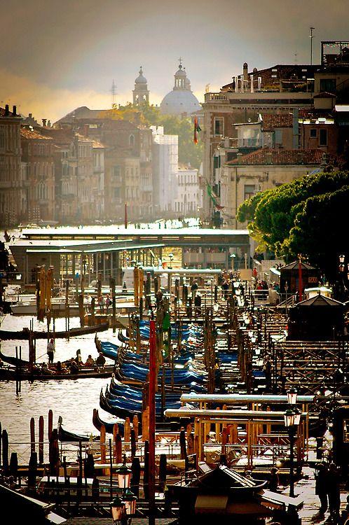 Plethora of Gondolas, Venice, Italy