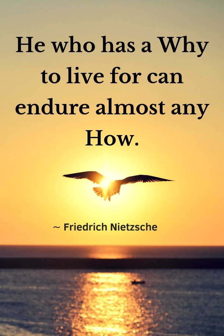 He who has a Why to live for can bear almost any How | Meant to be quotes,  Man's search for meaning, Nietzsche quotes
