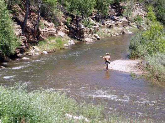 78 best images about reel time on pinterest news mexico for Fishing in new mexico
