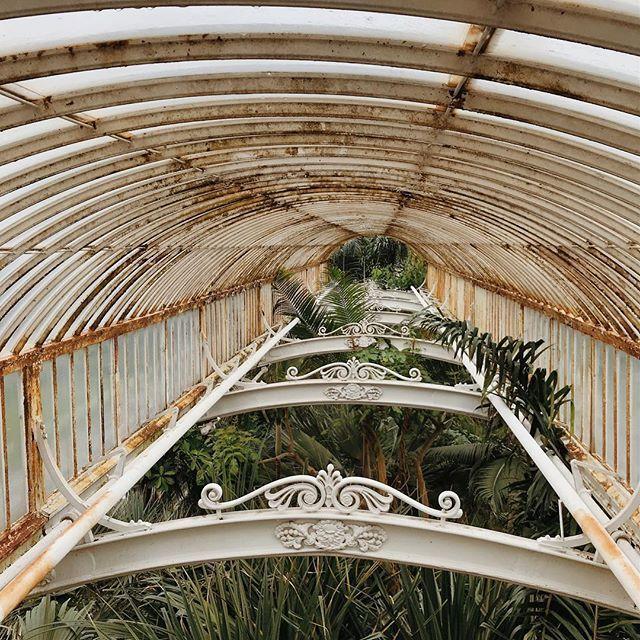 Botanical geometry