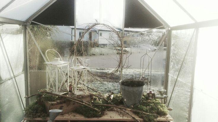 Vårt växthus har också fått lite adventspynt.
