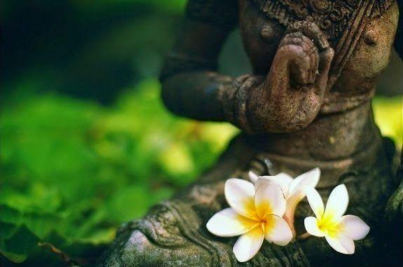 СИЛА МЫСЛИ СПОСОБНА ИЗМЕНЯТЬ ГЕНЕТИЧЕСКИЙ КОД ОРГАНИЗМА | Гармония Сознания