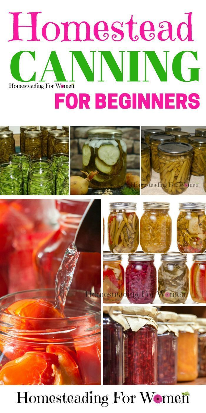Homestead lifestyle |Homestead canning for beginners. I can't wait to give this a try this year!