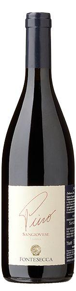 Sangiovese - PINO - Fontesecca organic wines