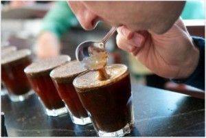 Want to Go Coffee Cupping?