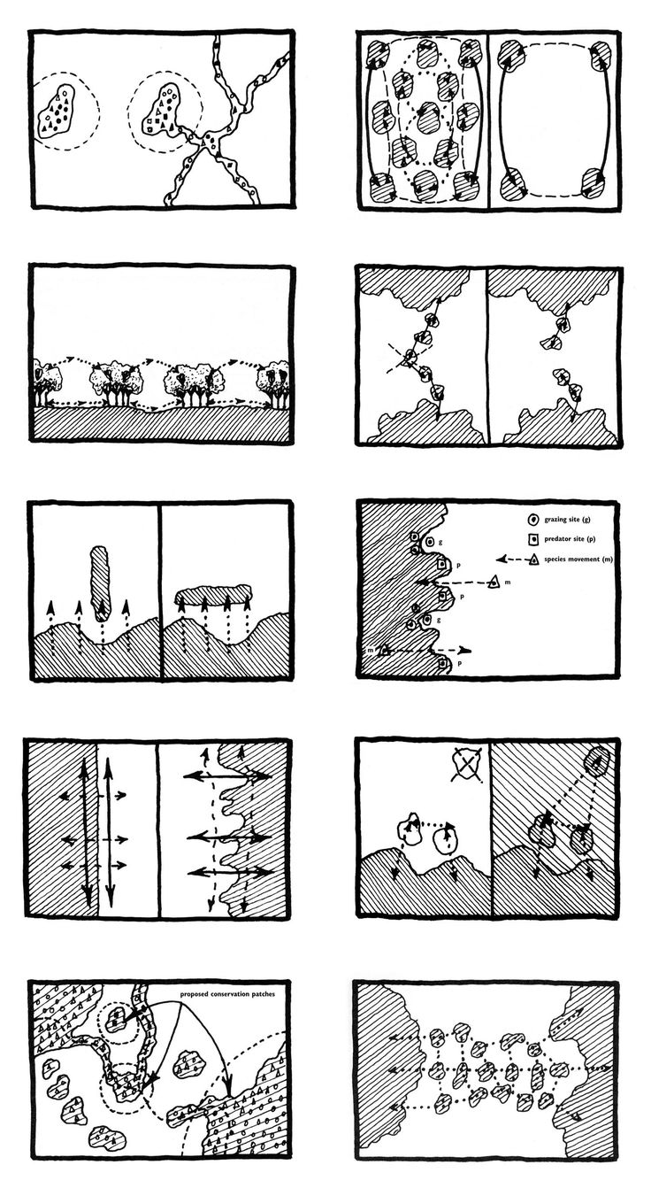 wildlife movement diagrams: Patches, Edges, Corridors, Mosaics, from Landscape Ecology Principles in Landscape Architecture and Land-Use Planning, Wenche E. Dramstad, James D. Olson and Richard T.T. Forman, 1996.