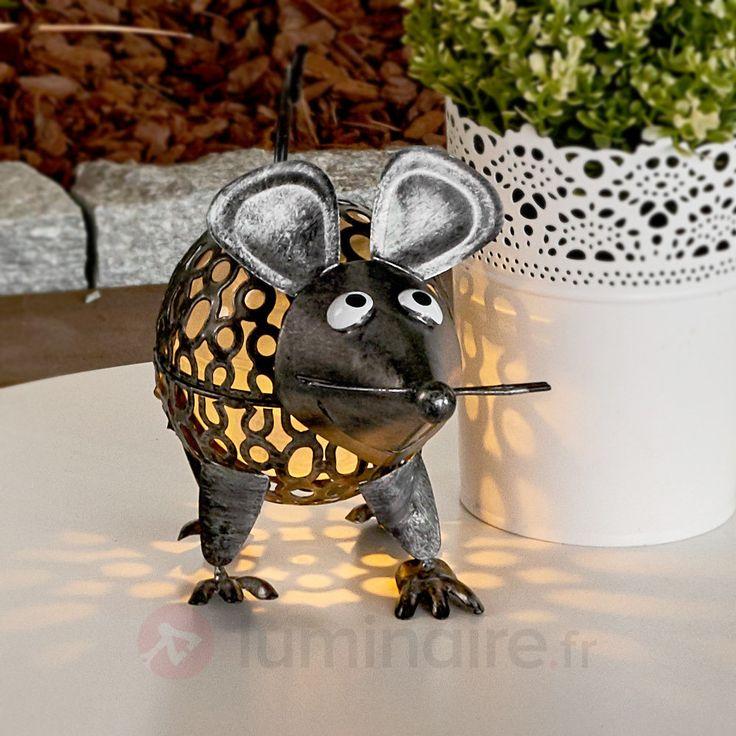 Les 25 meilleures id es de la cat gorie lampes solaires - Lampe solaire decorative exterieure ...