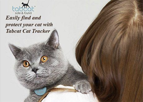 Cat Collar Locator..Can't find your cat? TabCat Pet Tracking Collar Cat Locator Lite Cat Finder Tracker System