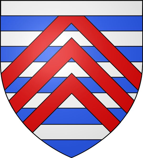 Cette famille tire son nom de son premier représentant connu, Foucauld de La Roche (1019), ou plus exactement du fondateur de cette seigneurie héréditaire ainsi distinguée des La Roche-Guyon, La Roche-Bernard, etc. Mais lui-même appartenait à un groupe onomastique plus ancien (celui des Fulco, d'où Fulco-ald ou Foucauld) apparu à la fin du règne de Charles le Chauve en Francia occidentalis.
