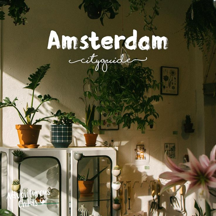 Don't know where to go in Amsterdam? You're on the right page. We've made together with locals and other travellers a Amsterdam city guide. Because you will never find the best hotspots of Amsterdam without some good tips and advice.  Check this page frequently as we update it with new places  Shopping, sightseeing, hotels, hostels, where to sleep, diner, coffeebars