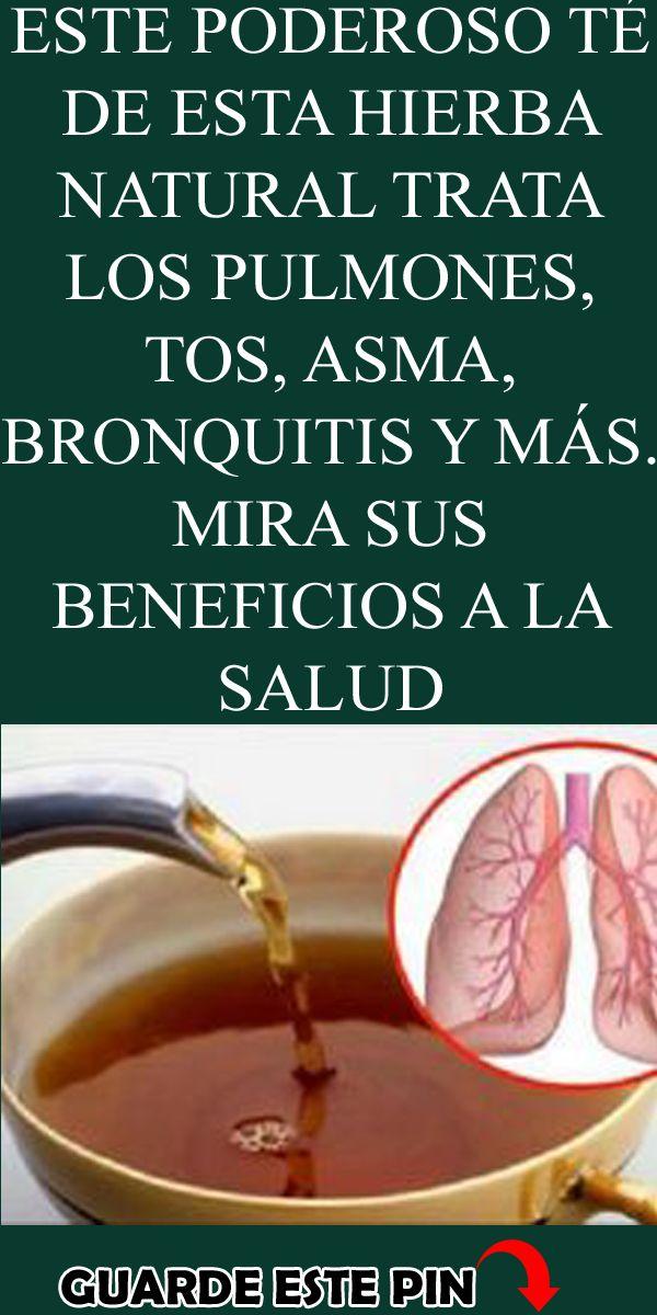ESTE PODEROSO TÉ DE ESTA HIERBA NATURAL TRATA LOS PULMONES, TOS, ASMA, BRONQUITIS Y MÁS. MIRA SUS BE – Tratamientos natural para el asma