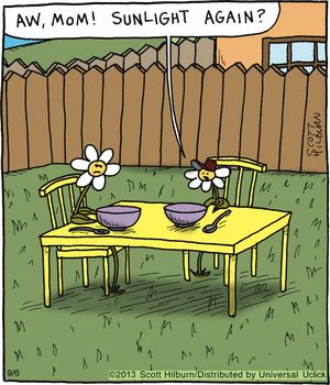 How cool is this? A heliotropic strip from Scott Hilburn's The Argyle Sweater.  helio = sun    trop =change, turn Heliotropic is a synonym for phototropic--see experiment below. Fun, huh?
